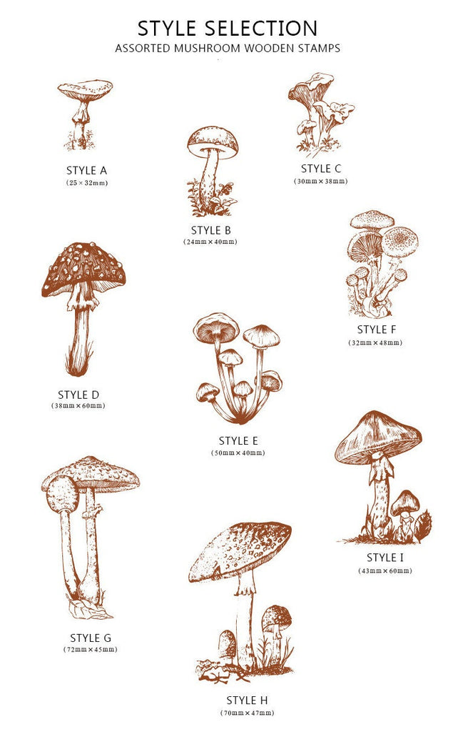 Mushroom Etchings Wooden Stamp