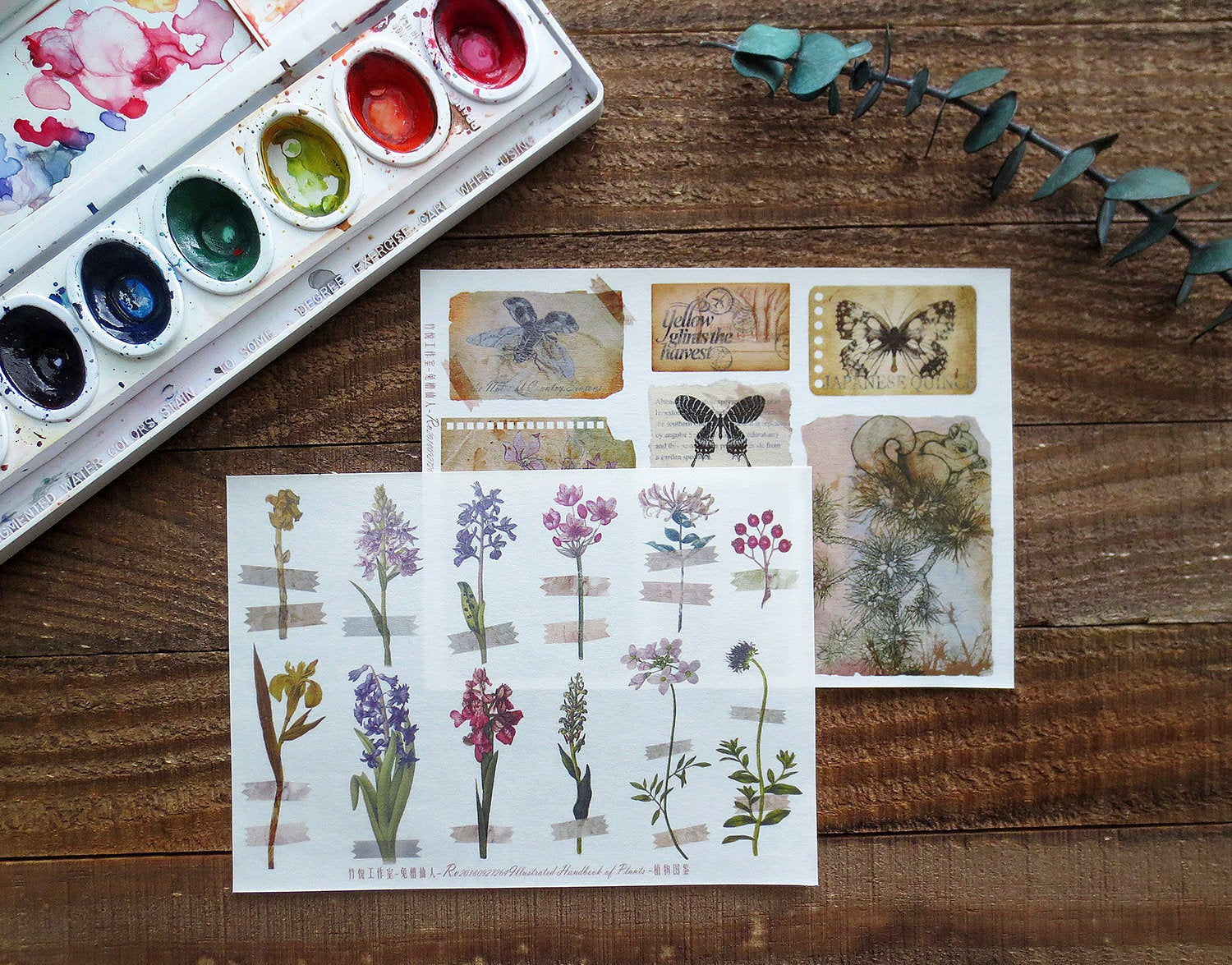 Illustrated Handbook of Plants Planner Sticker Sheet