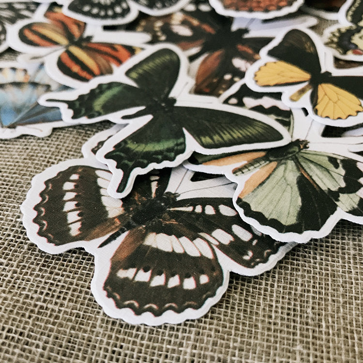 Butterfly Stickers Pack B