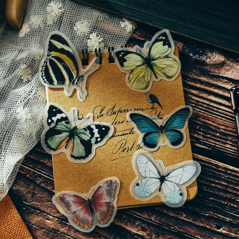 Natural Science Illustration Stickers Pack E