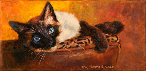 "Alluring, Siamese Cat, 6x12"", Original Oil Painting"