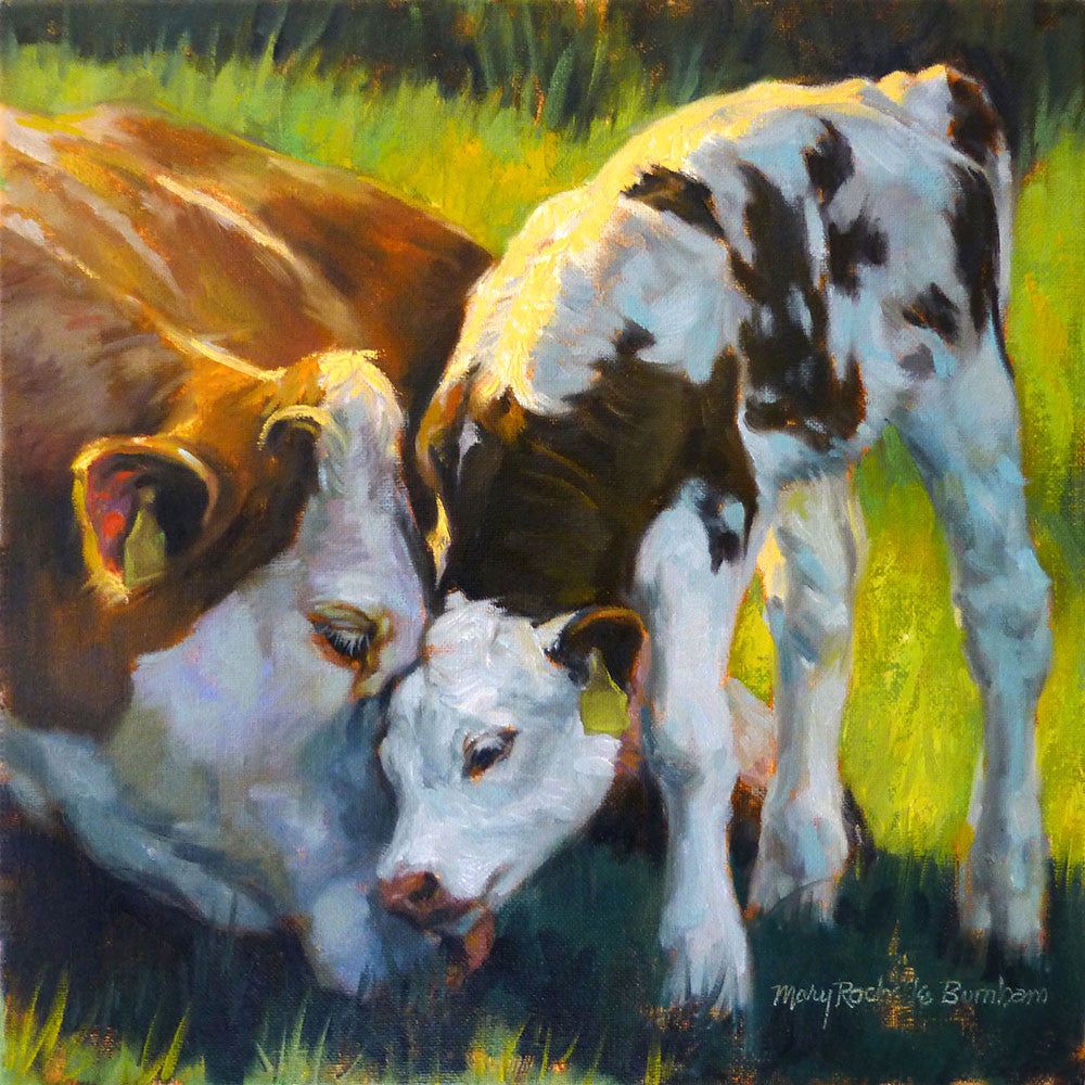 "Mother's Love, Cow & Calf Animal Art, 12x12"", Oil Painting"