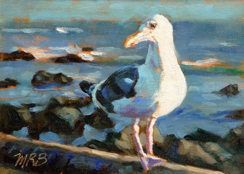 "Seaside Seagull, Bird Animal Portrait Art, 5x7"", Oil Painting"