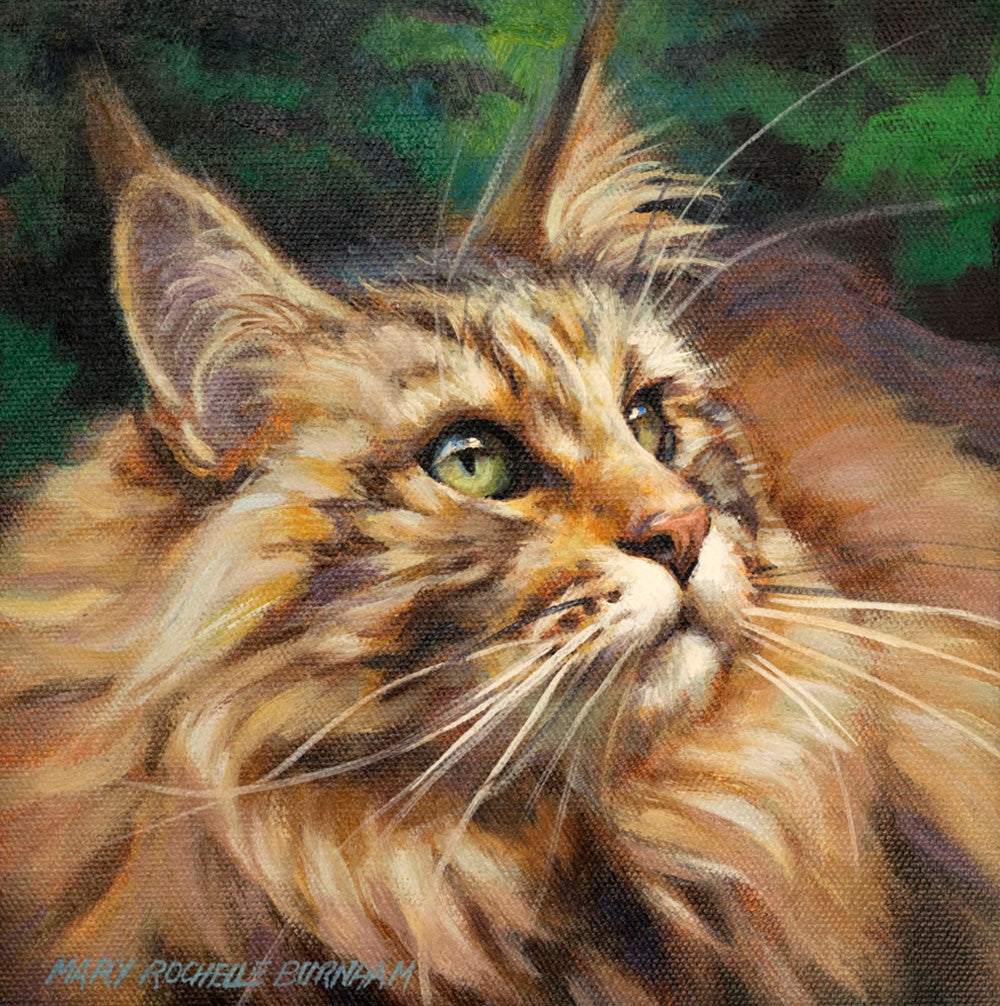 "What's New, Pussycat? Maine Coon Cat Art, 9x12"", Oil Painting"