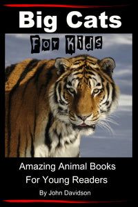 Big Cats For Kids - Amazing Animal Books for Young Readers