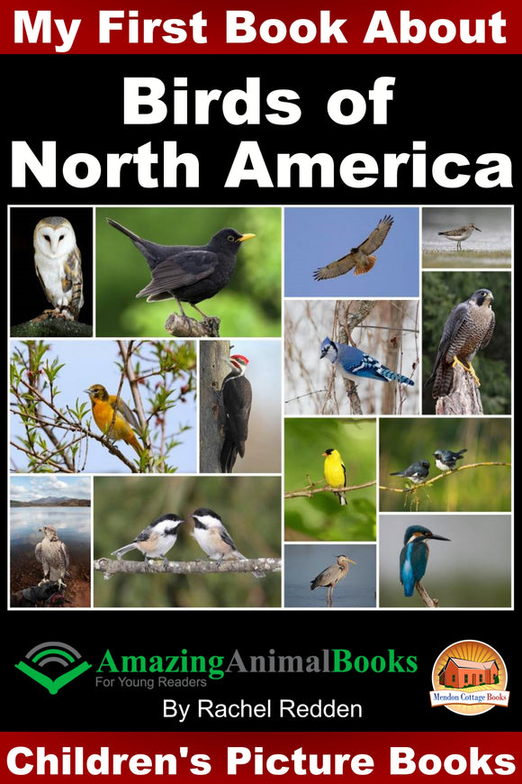 My First Book about Birds of North America - Amazing Animal Books