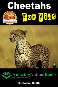 Cheetahs For Kids Amazing Animal Books For Young Readers