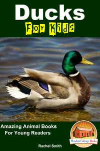 Ducks For Kids  Amazing Animal Books For Young Readers