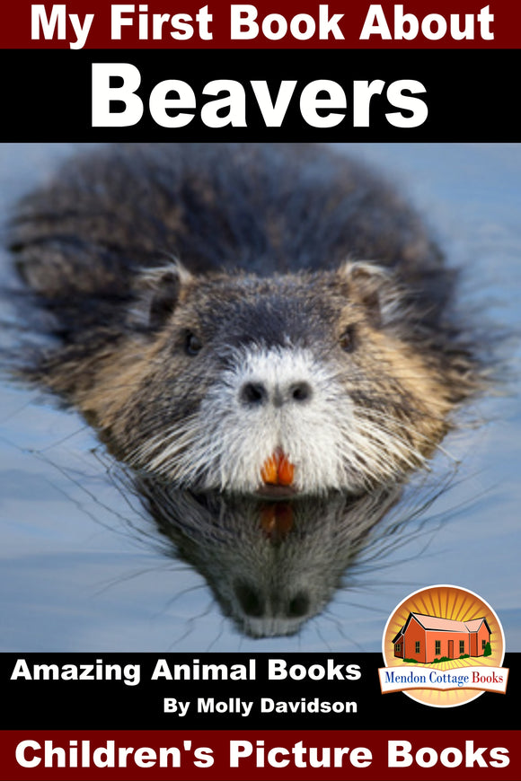 My First Book About Beavers - Amazing Animal Books