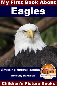 My First Book about Eagles - Amazing Animal Books