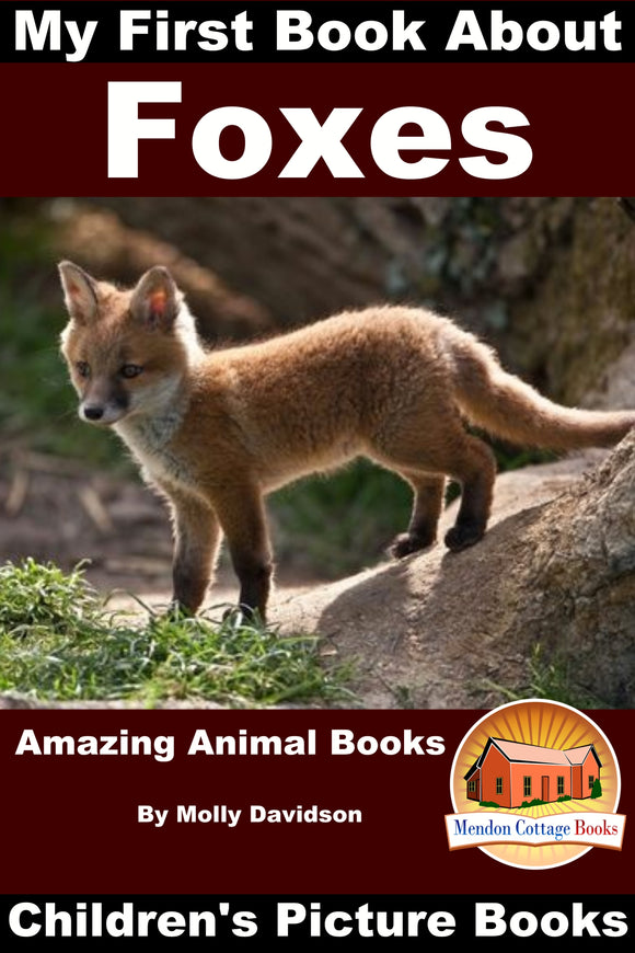 My First Book about Foxes - Amazing Animal Books