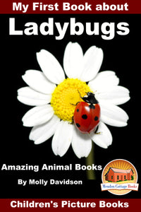 My First Book about Ladybugs - Amazing Animal Books