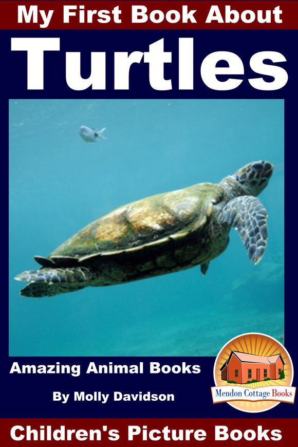 My First Book about the Turtles - Amazing Animal Books