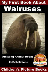My First Book about the Walruses - Amazing Animal Books