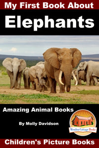 My First Book about Elephant - Amazing Animal Books