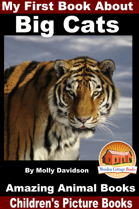 My First Book About Big Cats - Amazing Animal Books