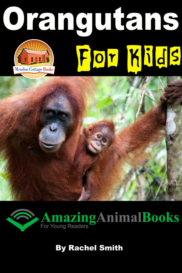 Orangutans For Kids  Amazing Animal Books For Young Readers