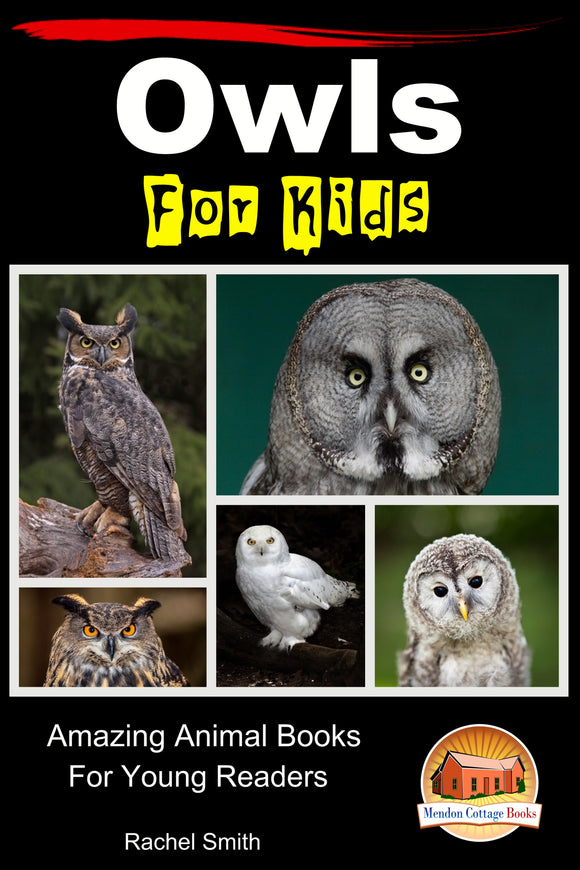 Owls For Kids-Amazing Animal Books For Young Readers