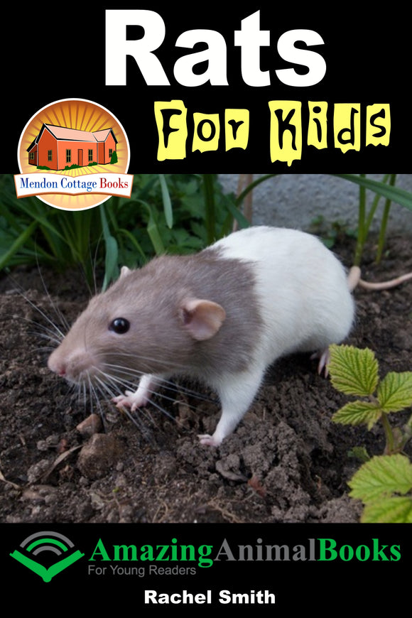 Rats For Kids-Amazing Animal Books For Young Readers