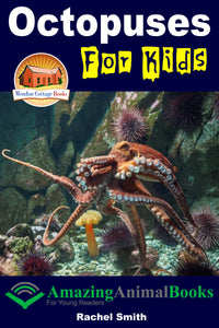Octopuses For Kids  Amazing Animal Books For Young Readers