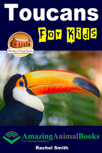 Toucans For Kids  Amazing Animal Books For Young Readers