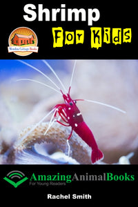 Shrimp For Kids-  Amazing Animal Books For Young Readers