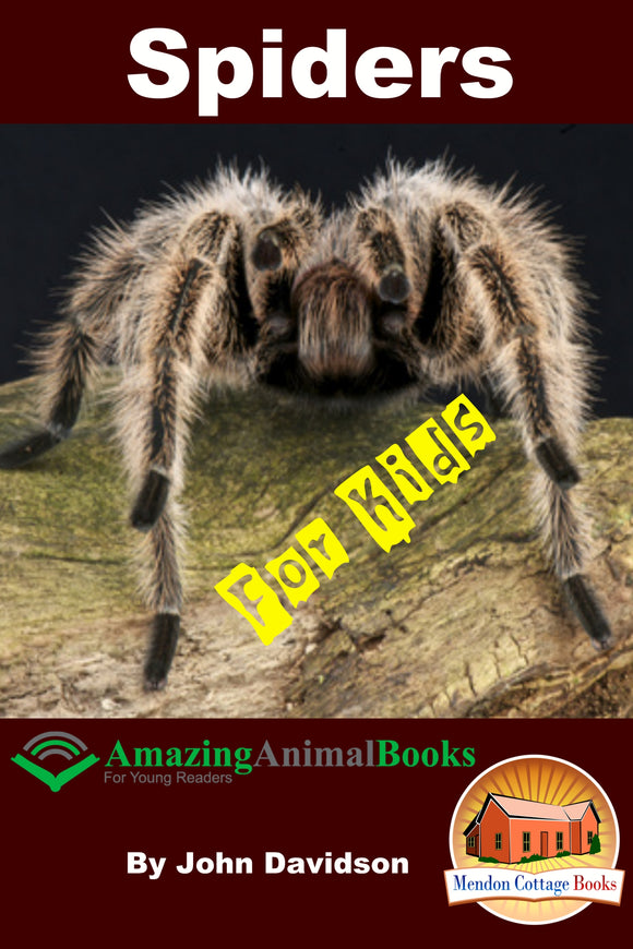 Spiders For Kids  Amazing Animal Books for Young Readers