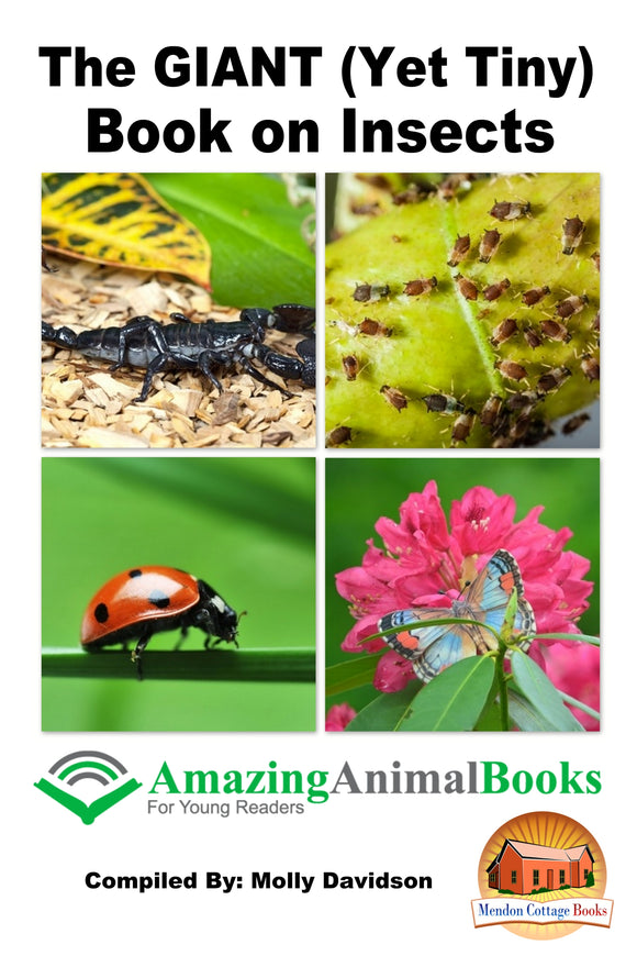 The GIANT (Yet Tiny) Book on Insects-Amazing Animal Books for Young Readers