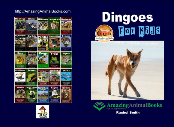 Dingoes For Kids Amazing Animal Books For Young Readers