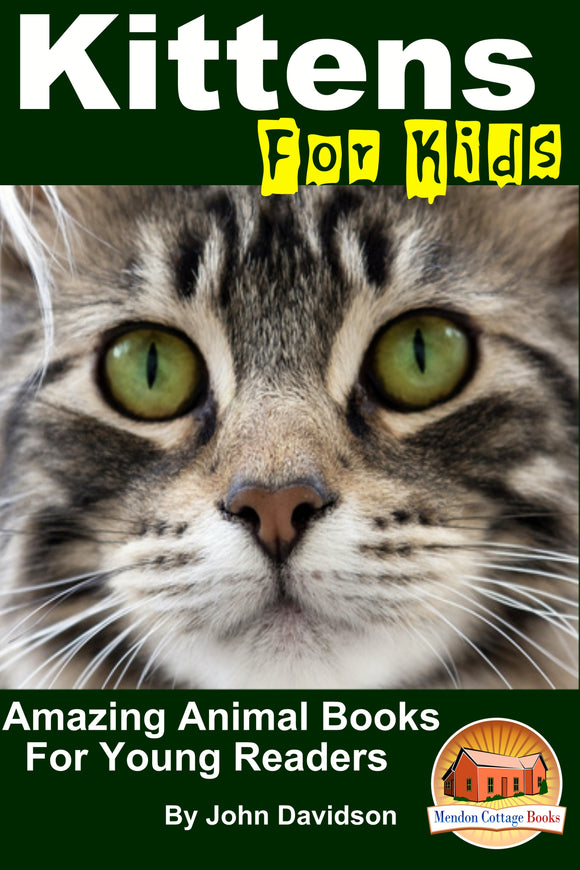 Kittens For Kids  - Amazing Animal Books for  Young Readers