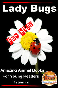 Lady Bugs For Kids-Amazing Animal Books for Young Readers