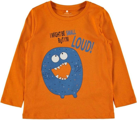 Name it Mini Boy I Might Be Small But I'm Loud Long Sleeved Monster Top ORANGE