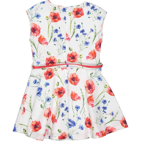 Try Beyond Girls Red Poppy Floral Dress