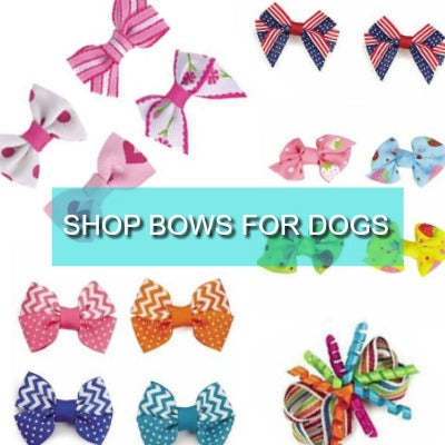 bows for dogs