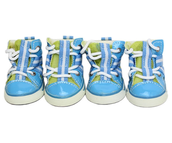 Converse Dog Shoes – Blue