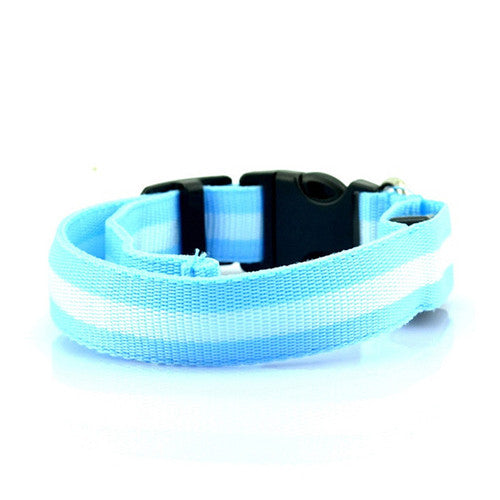 LED Collar - Blue