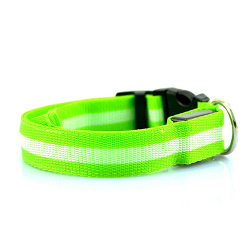 LED Collar - Green