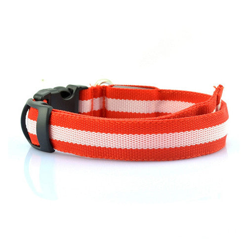 LED Collar - Red