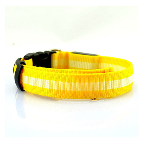 LED Collar - Yellow