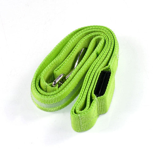 LED  Leashes - Green