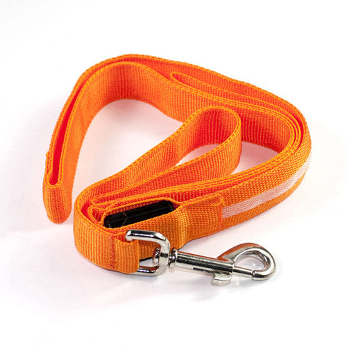 LED  Leashes - Orange