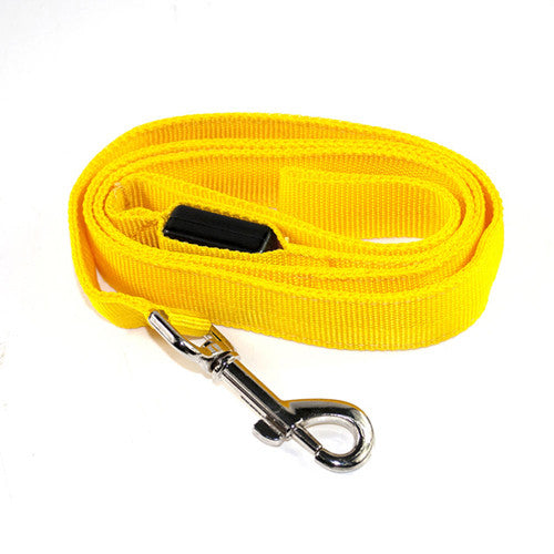 LED  Leashes -Yellow