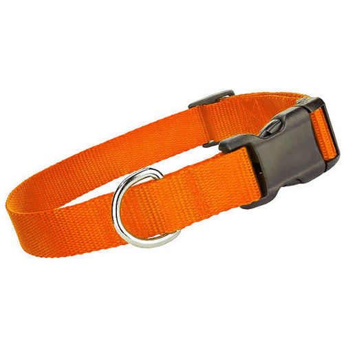 Nylon Collar - Orange