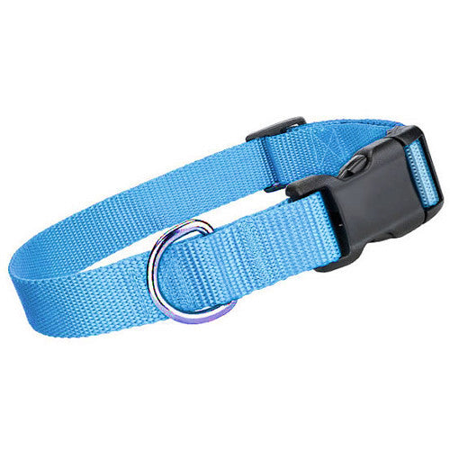 Nylon Collar - Light Blue