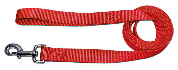 "4' x 3/4"" Nylon Lead - Red"