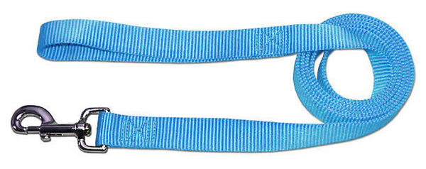 "4' x 3/4"" Nylon Lead - Light Blue"