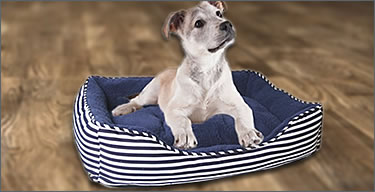 Pet beds and houses Icon