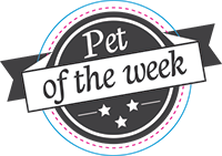 Pet of the Week Badge