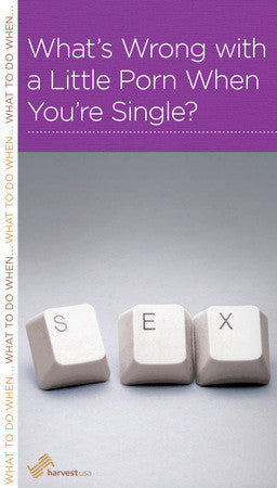 What's Wrong with a Little Porn When You're Single?