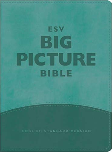 ESV Big Picture Bible TruTone Teal